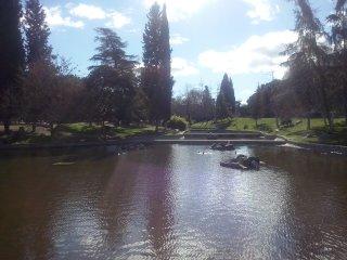 riego parques y jardines